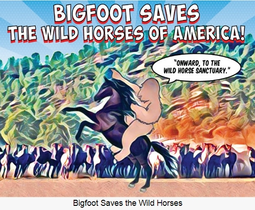 BGFT News Wild Horse Pereserrvation