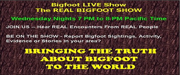 Finding Bigfoot Show Does Bigfoot Exist